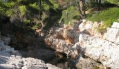 Alonissos - Photo 21