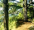 Φυσιολατρικος Τουρισμος Αλόννησος