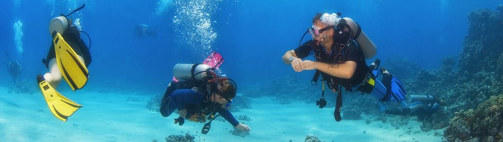 Diving Tourism - Photo 1
